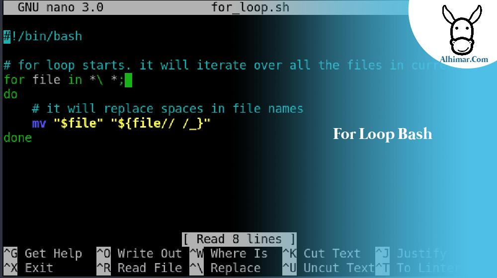 for loop bash