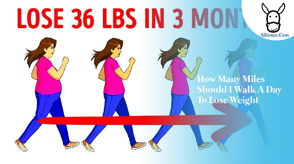 how many miles should i walk a day to lose weight