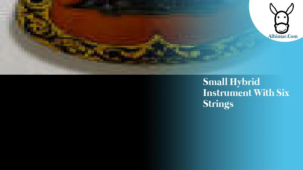small hybrid instrument with six strings