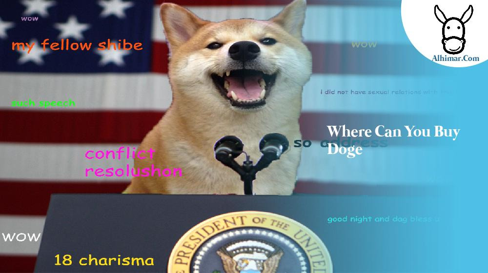 where can you buy doge