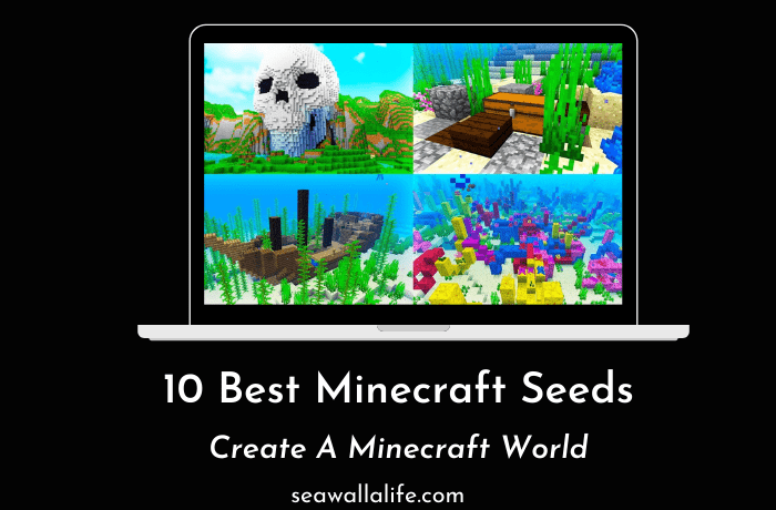10 Best Minecraft Seeds in 2021 (Handpicked List)