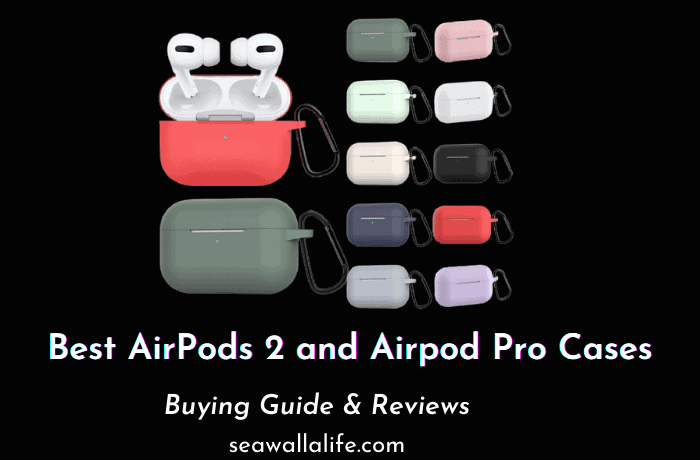 Best AirPods 2 & AirPods Pro Cases (2021 Top Picks)