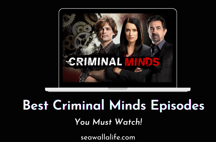 20 Best Criminal Minds Episodes to Watch in 2021