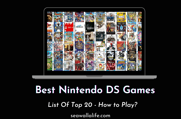 20 Best Nintendo DS Games in 2021 (The Ultimate List)