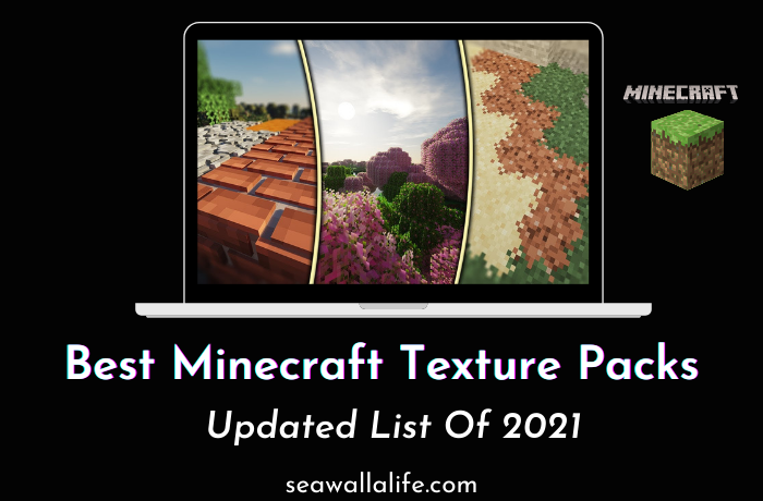 Best Minecraft Texture Packs (Updated List Of 2021)