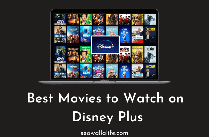 25 Best Movies to Watch on Disney Plus [Updated 2021]