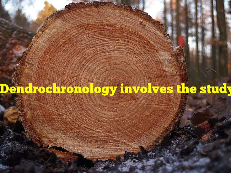 Dendrochronology involves the study of data from what?
