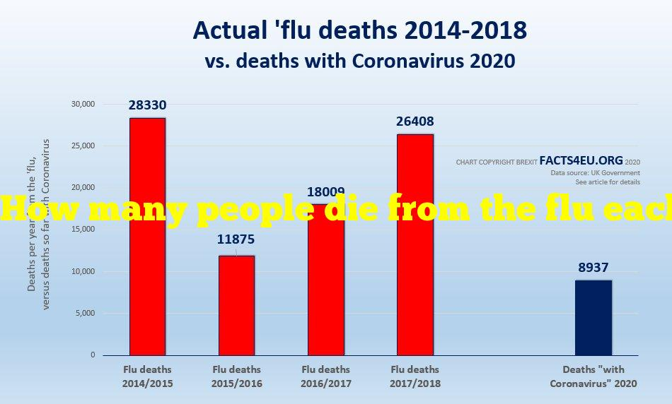 How many people die from the flu each year?