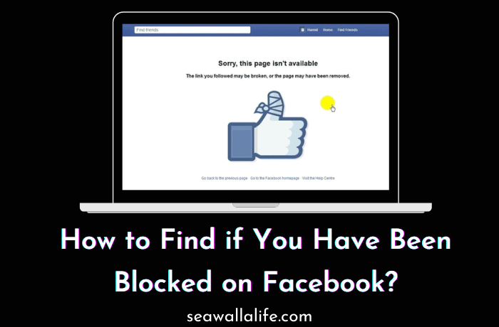 How to Find If You Have Been Blocked on Facebook?