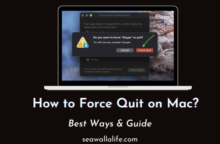 How to Force Quit on Mac (Detailed Guide)