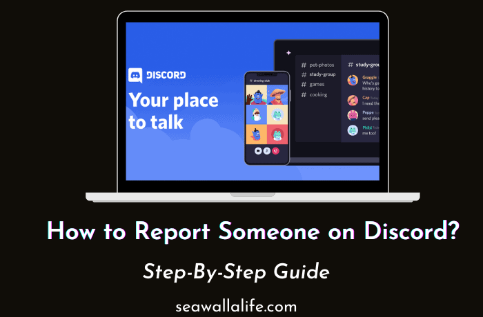 How to Report Someone on Discord (Step By Step)
