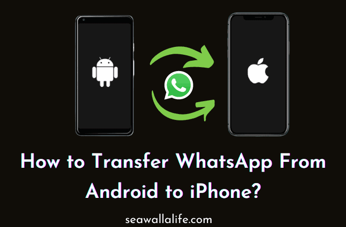 How to Transfer WhatsApp from Android to iPhone?