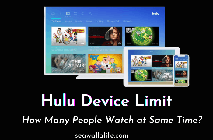 Hulu Device Limit – How Many Users Can Watch?