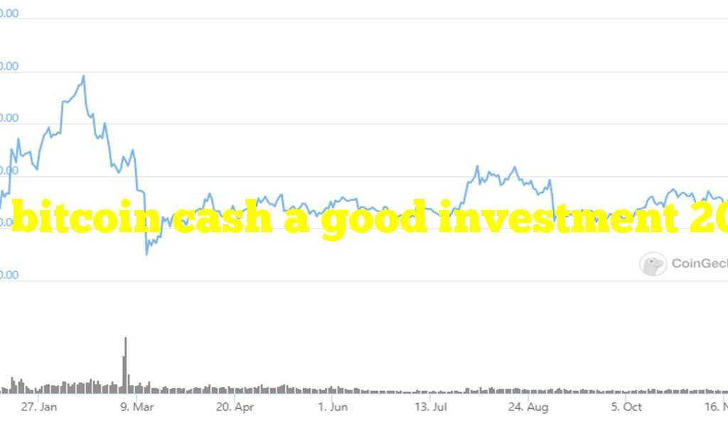Is bitcoin cash a good investment 2021