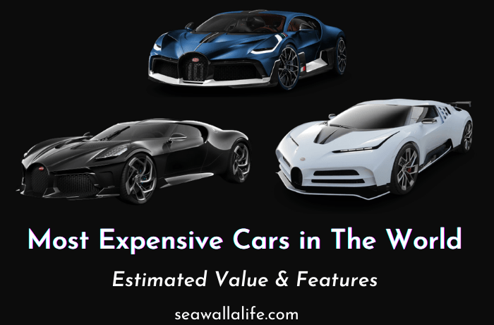 Top 10 Most Expensive Cars in The World (Updated 2021)