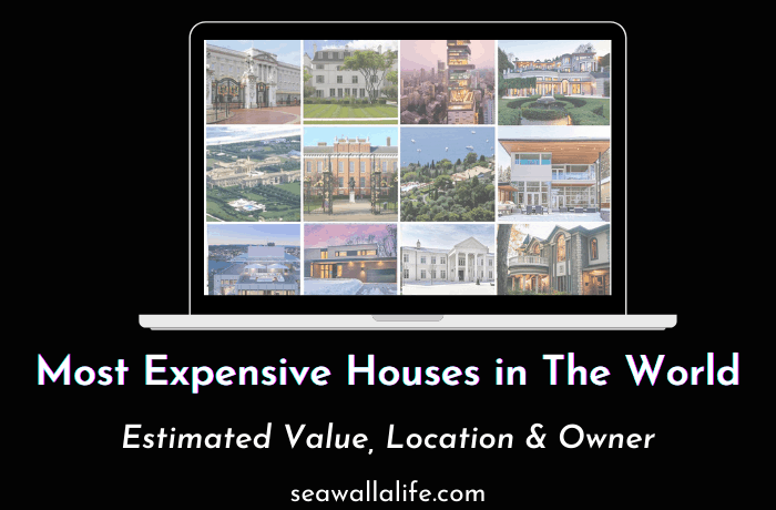 17 Most Expensive Houses in The World (Updated List 2021)