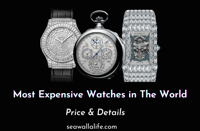 17 Most Expensive Watches in The World [Updated 2021]