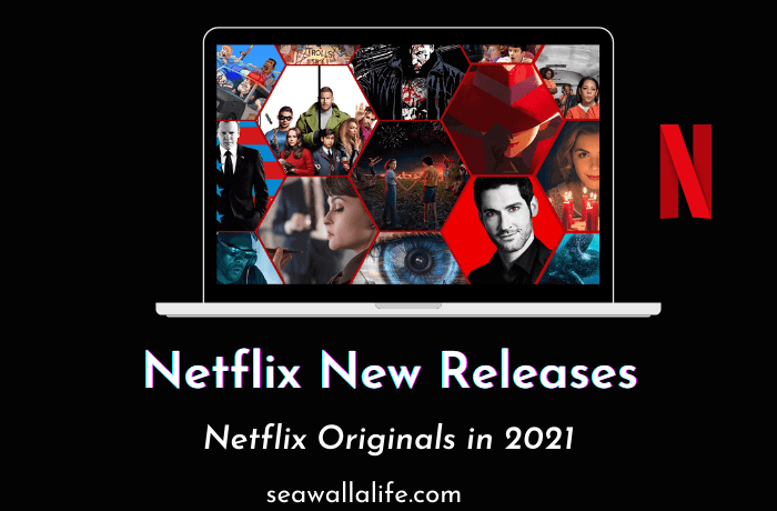 Netflix New Releases February 2021 – Must Watch