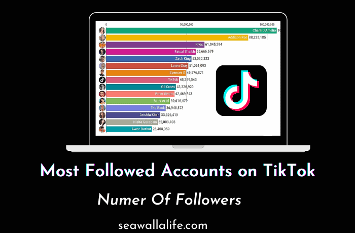 Top 10 Most Followed People on TikTok (Updated 2021)