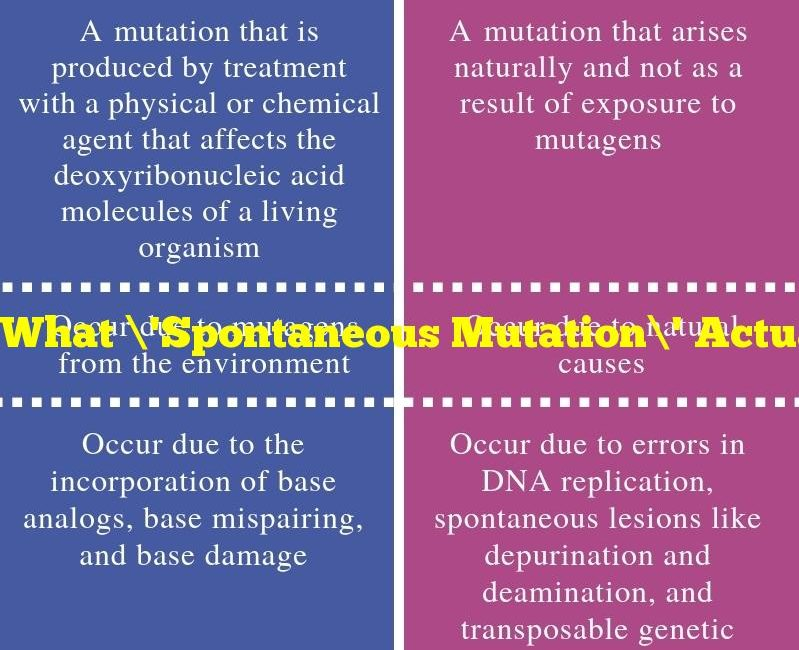 What 'Spontaneous Mutation' Actually Means