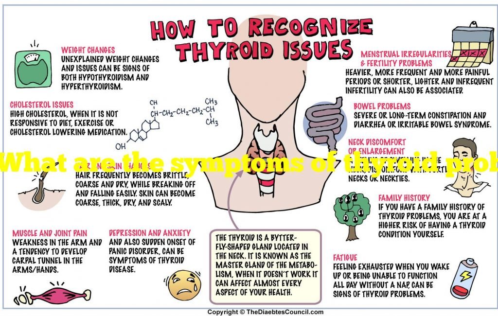 What are the symptoms of thyroid problems in females?