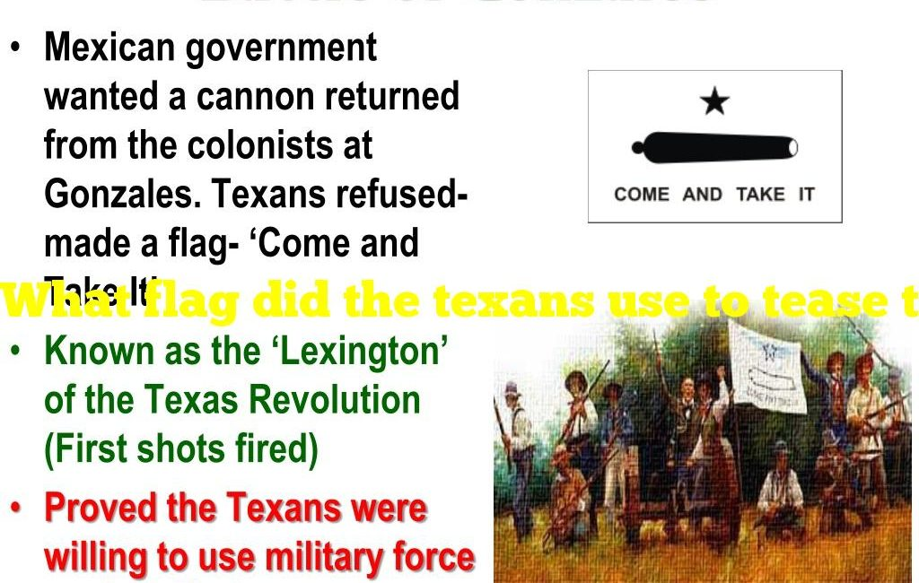 What flag did the texans use to tease the mexican army at gonzales?