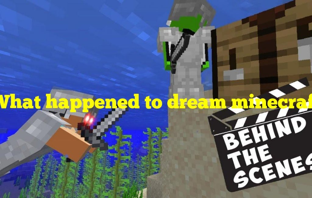 What happened to dream minecraft