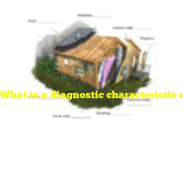 What is a diagnostic characteristic of a mineral used to make a cement slab in your house?