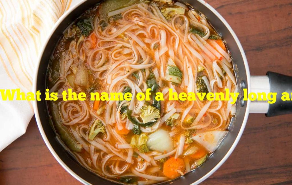 What is the name of a heavenly long and thin noodle?