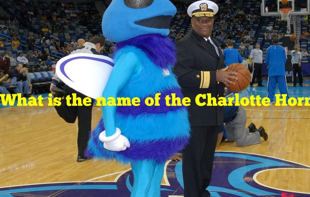 What is the name of the Charlotte Hornets' hornet mascot?