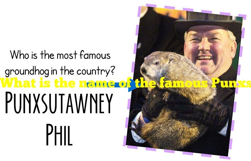 What is the name of the famous Punxsutawney groundhog?