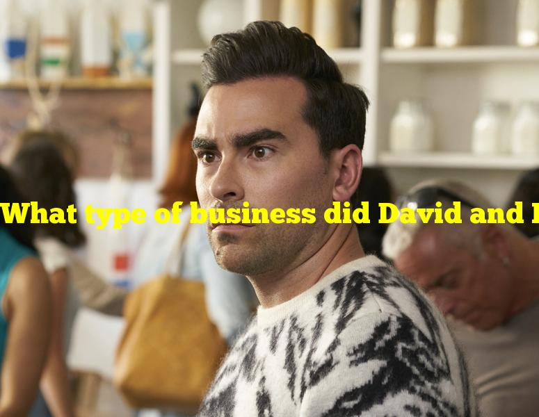 """What type of business did David and Patrick own in """"Schitt's Creek""""?"""