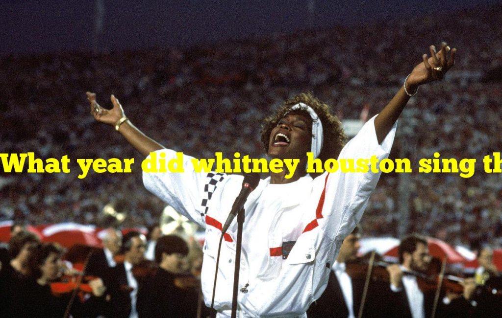 What year did whitney houston sing the national anthem?