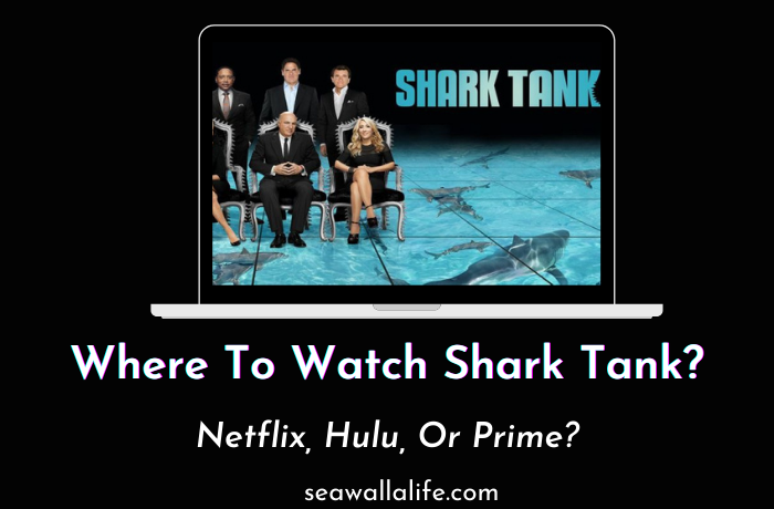 How to Watch Shark Tank – Is it on Netflix, Hulu or Prime?