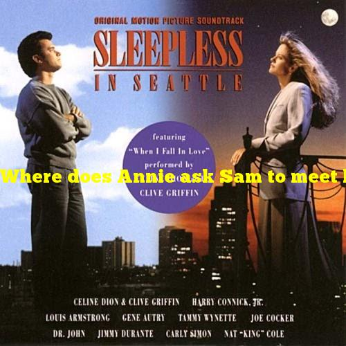 """Where does Annie ask Sam to meet her in """"Sleepless in Seattle""""?"""