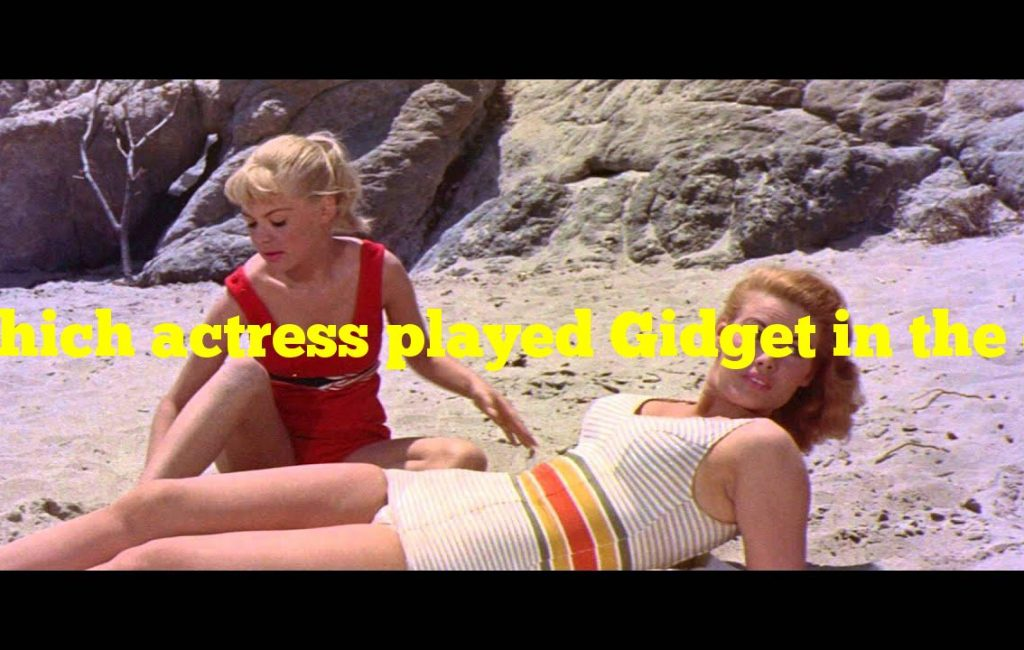 Which actress played Gidget in the original surfer film?