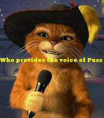 Who provides the voice of Puss in Boots in the Shrek franchise?