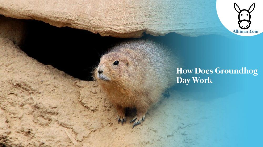 how does groundhog day work