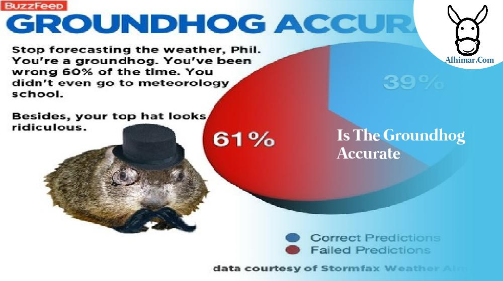 is the groundhog accurate