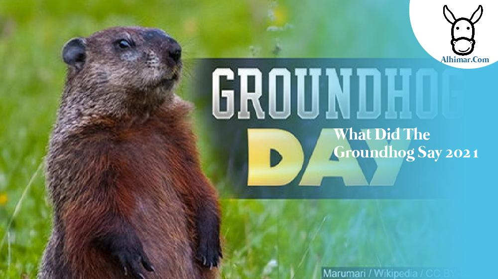 what did the groundhog say 2021