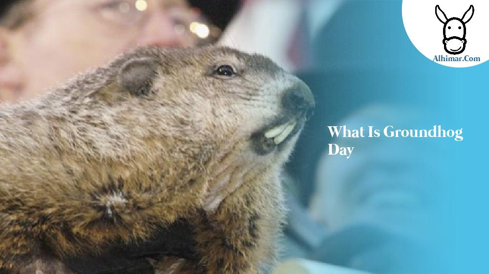 what is groundhog day