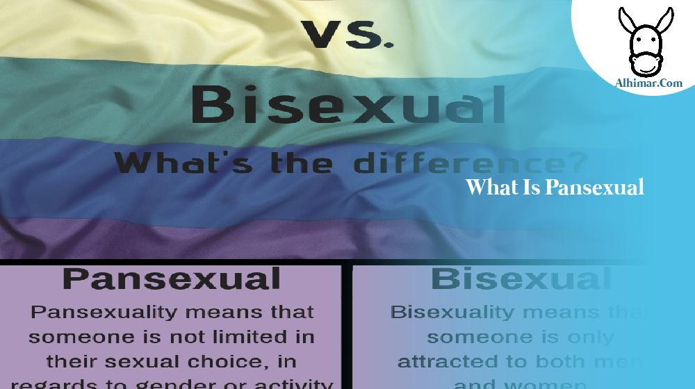 what is pansexual