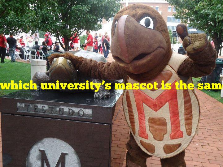 which university's mascot is the same as its state's animal?