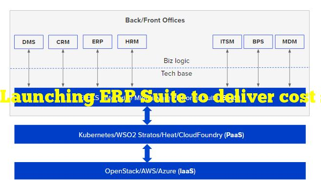 Launching ERP Suite to deliver cost savings for AWS customers