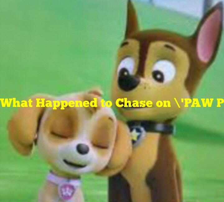 What Happened to Chase on 'PAW Patrol?' Was He Canceled, and If so, Why?