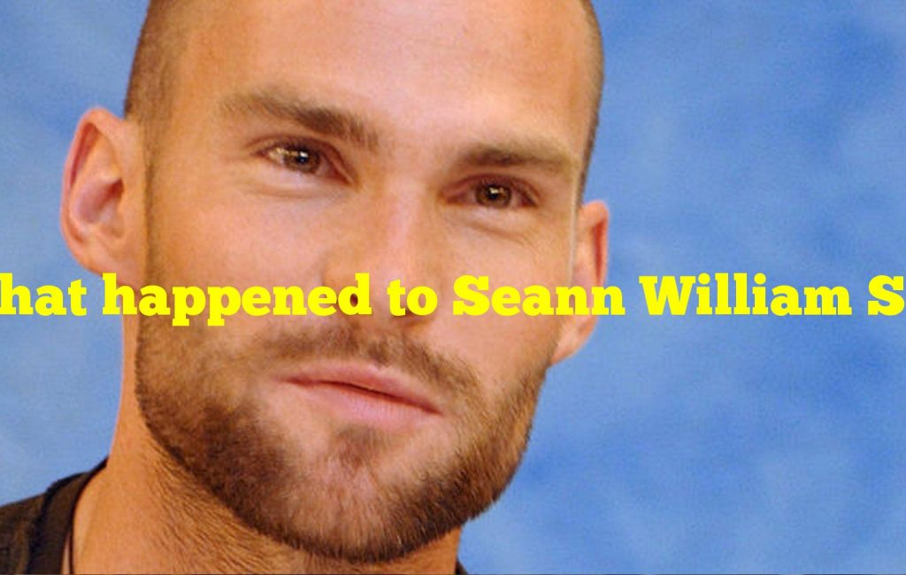 What happened to Seann William Scott? Why won't Hollywood cast Scott anymore?
