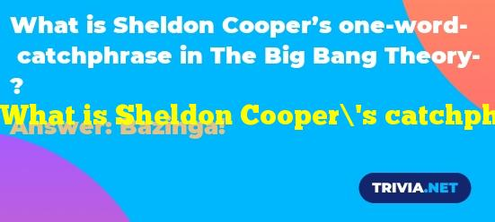 What is Sheldon Cooper's catchphrase in The Big Bang Theory?