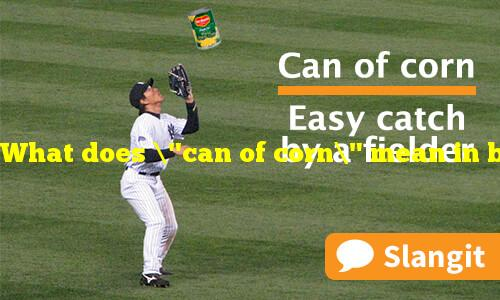 """What does """"can of corn"""" mean in baseball?"""