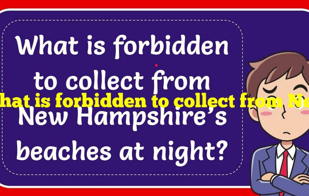 What is forbidden to collect from New Hampshire's beaches at night?