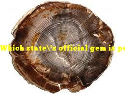 Which state's official gem is petrified wood?